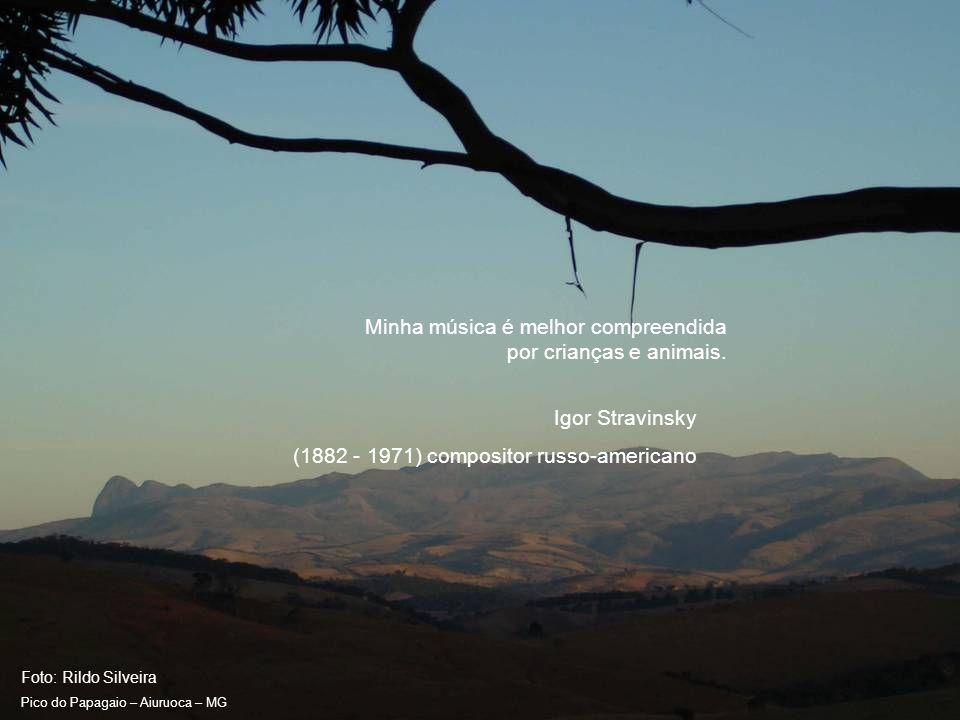 Foto: Rildo Silveira Pico do Papagaio – Aiuruoca – MG Infeliz do homem cuja vida se prolonga na mediocridade.