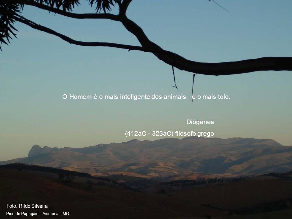 Foto: Rildo Silveira Pico do Papagaio – Aiuruoca – MG Eu não sou um ambientalista.