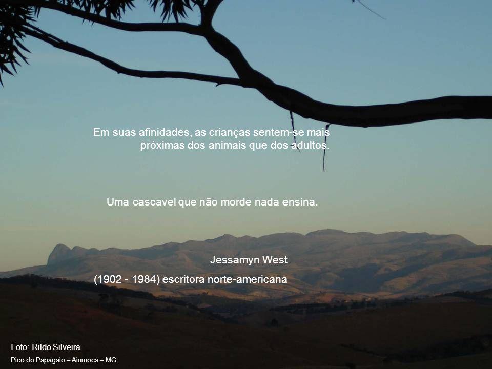 Foto: Rildo Silveira Pico do Papagaio – Aiuruoca – MG Não importa se os animais são incapazes ou não de pensar.