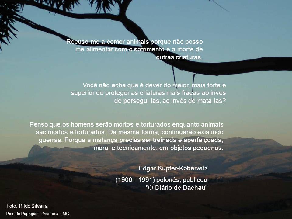 Foto: Rildo Silveira Pico do Papagaio – Aiuruoca – MG Todo animal deixa vestígios do que ele foi; o homem é o único que deixa pistas do que ele criou.