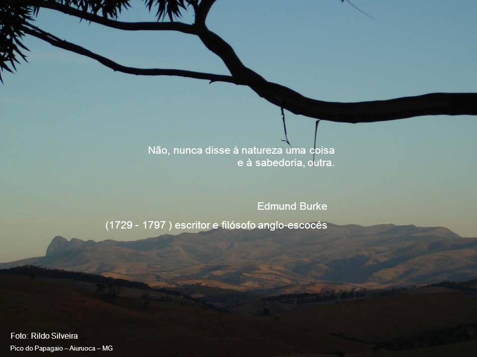 Foto: Rildo Silveira Pico do Papagaio – Aiuruoca – MG Não, nunca disse à natureza uma coisa e à sabedoria, outra.
