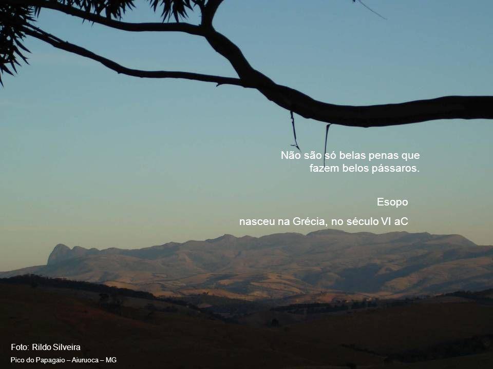 Foto: Rildo Silveira Pico do Papagaio – Aiuruoca – MG Um sofrimento é sempre uma advertência, pior para quem não sabe compreendê-la.