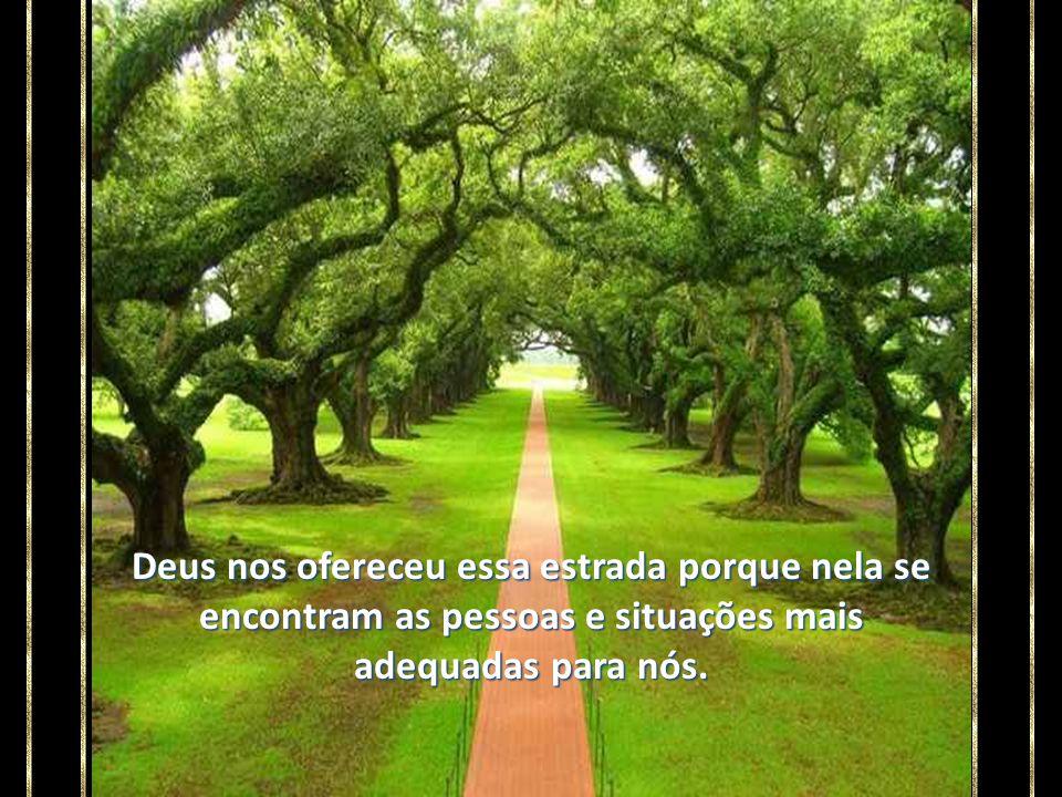 A estrada de nossa existência pode ser bela, simples, rica, tortuosa. Seja como for, ela é o melhor caminho para o nosso aprendizado.
