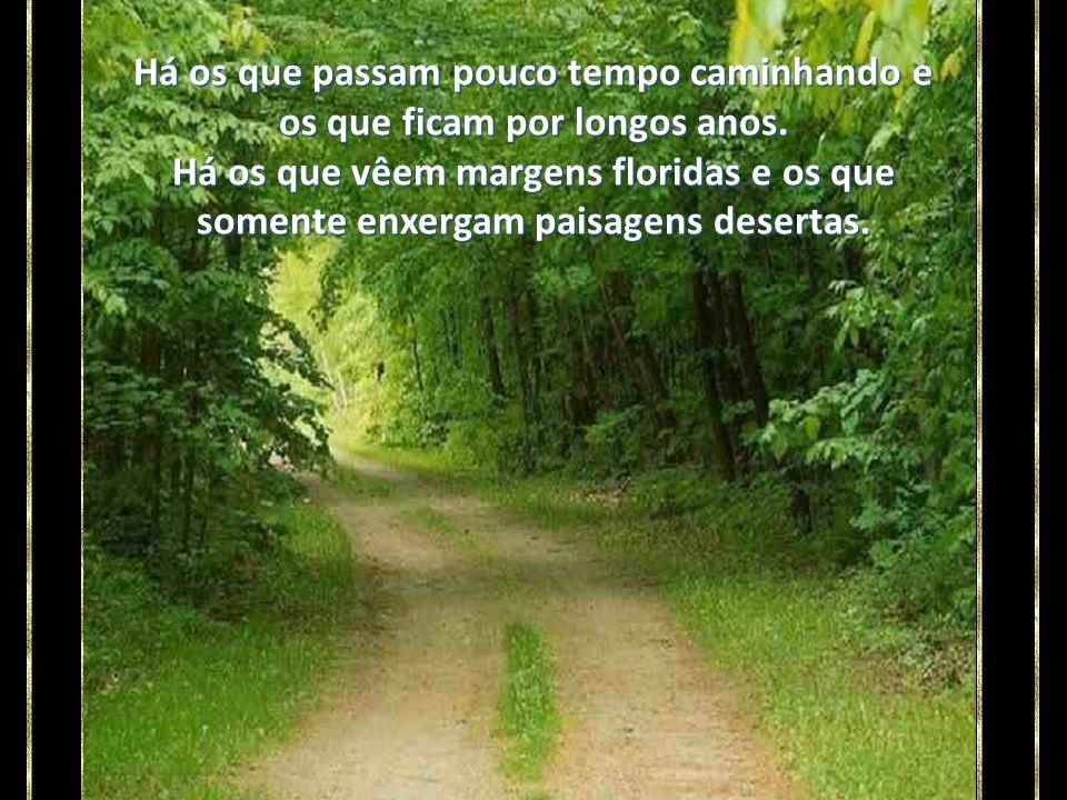 Cada um de nós caminha pela vida como se fosse um viajante que percorre uma estrada.