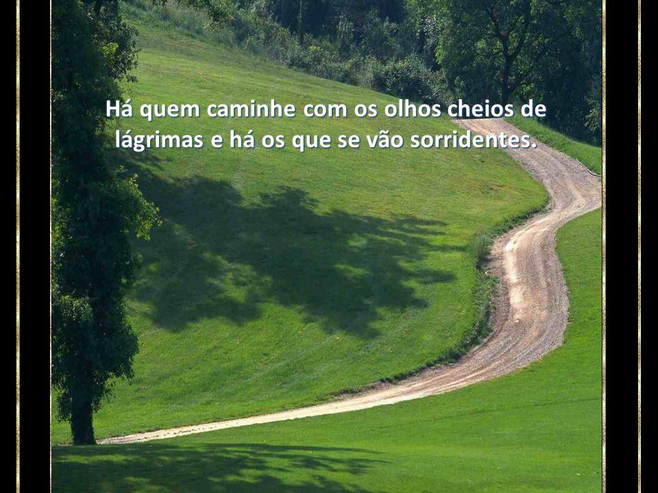 É que na longa estrada da vida, esquecemos que a estrada terá fim.