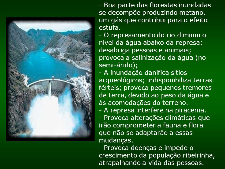 - Boa parte das florestas inundadas se decompõe produzindo metano, um gás que contribui para o efeito estufa. - O represamento do rio diminui o nível