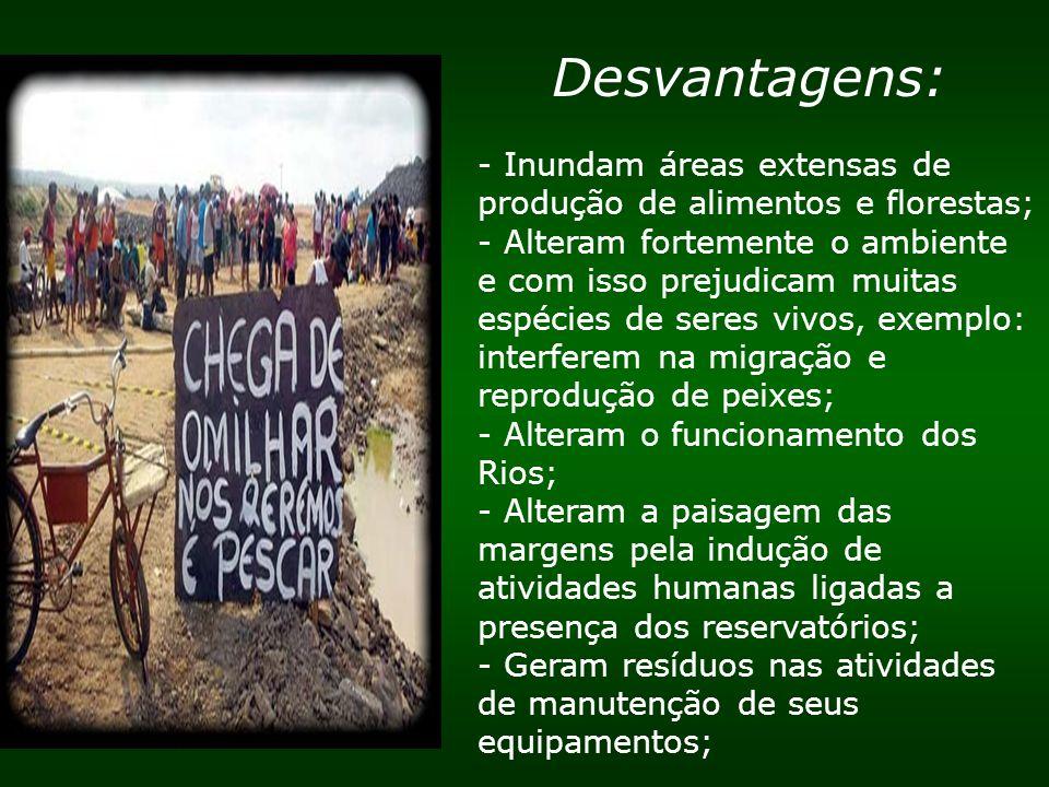 Desvantagens: - Inundam áreas extensas de produção de alimentos e florestas; - Alteram fortemente o ambiente e com isso prejudicam muitas espécies de