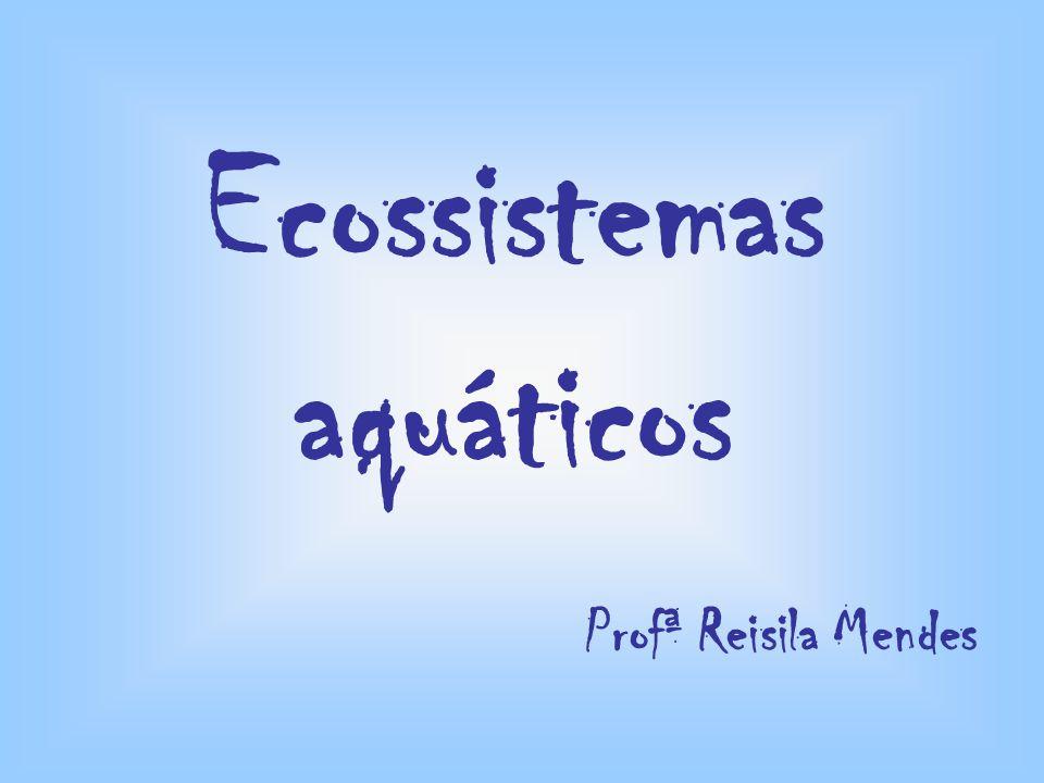 Ecossistemas aquáticos Profª Reisila Mendes