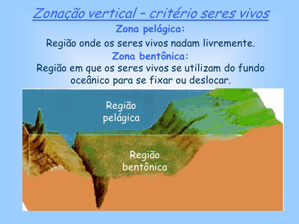 Zonação vertical – critério Profundidade Zona sublitoral: a plataforma continental.