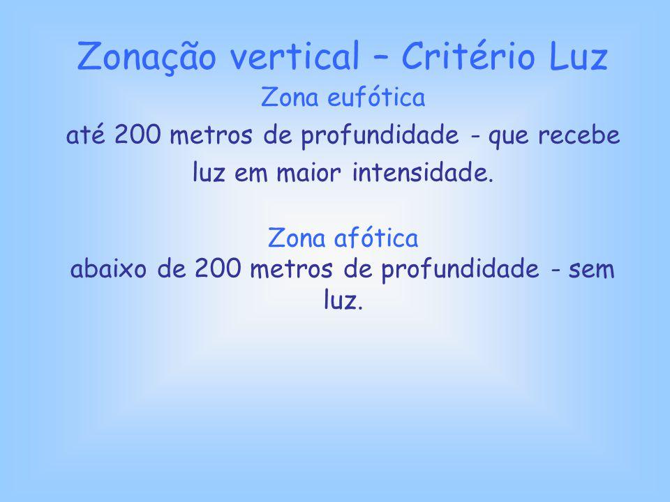 Zonação vertical – Critério Luz Zona eufótica até 200 metros de profundidade - que recebe luz em maior intensidade. Zona afótica abaixo de 200 metros