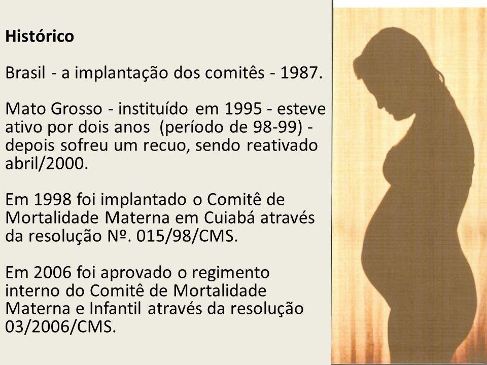 Histórico Brasil - a implantação dos comitês - 1987. Mato Grosso - instituído em 1995 - esteve ativo por dois anos (período de 98-99) - depois sofreu