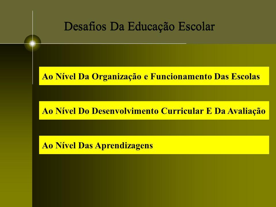 Desafios Da Educação Escolar Ao Nível Da Organização e Funcionamento Das Escolas Ao Nível Do Desenvolvimento Curricular E Da Avaliação Ao Nível Das Ap