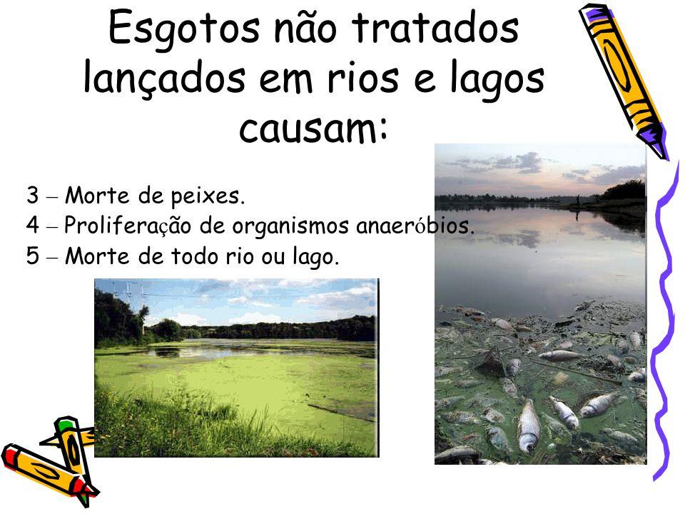 Esgotos não tratados lançados em rios e lagos causam: 1 - Aumento da mat é ria orgânica (Eutrofiza ç ão). 2 - Aumento de plantas e algas na superf í c