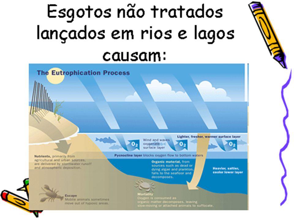 Processo em que praia, rio ou lago adquire grande quantidade de nutrientes pelo despejo de esgotos ou resíduos agrícolas (especialmente fosfatos e nit