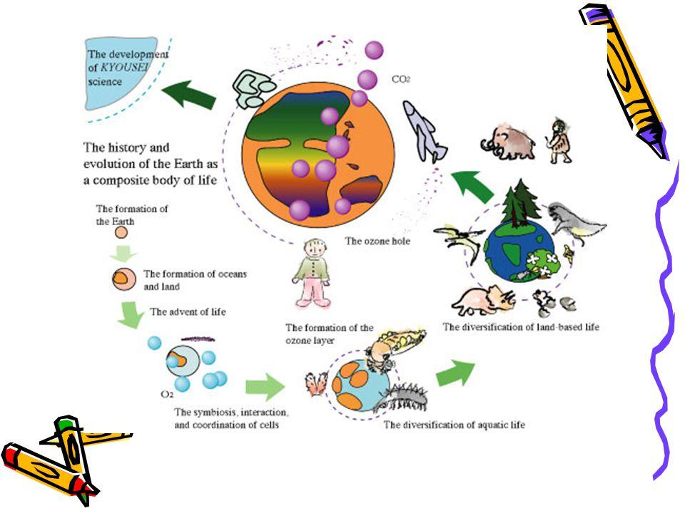 Controle Biológico de Pragas Feito pela introdução de inimigos naturais substituindo a necessidade de utilização dos agrotóxicos.