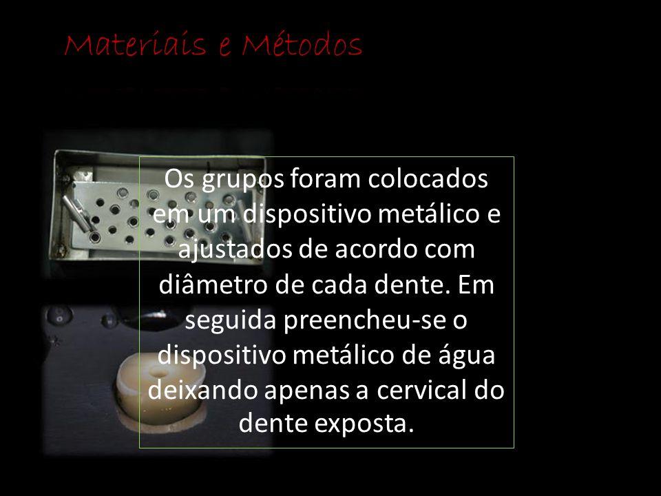 Os grupos foram colocados em um dispositivo metálico e ajustados de acordo com diâmetro de cada dente. Em seguida preencheu-se o dispositivo metálico