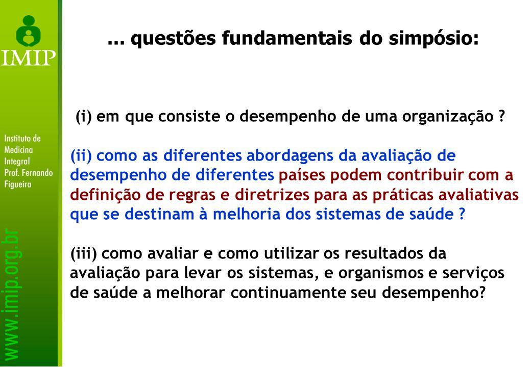 (i) em que consiste o desempenho de uma organização .