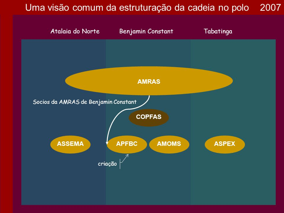 AMOMS AMRAS Atalaia do NorteBenjamin ConstantTabatinga ASPEXASSEMA COPFAS APFBC criação Socios da AMRAS de Benjamin Constant Uma visão comum da estrut