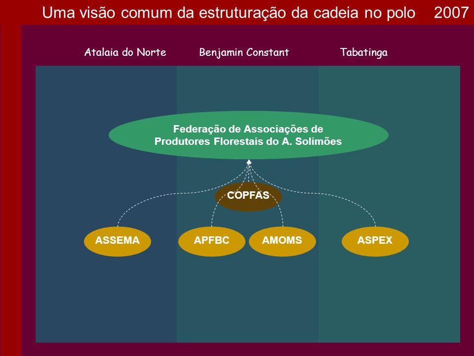 AMOMS Federação de Associações de Produtores Florestais do A. Solimões Atalaia do NorteBenjamin ConstantTabatinga ASPEXASSEMA COPFAS APFBC Uma visão c