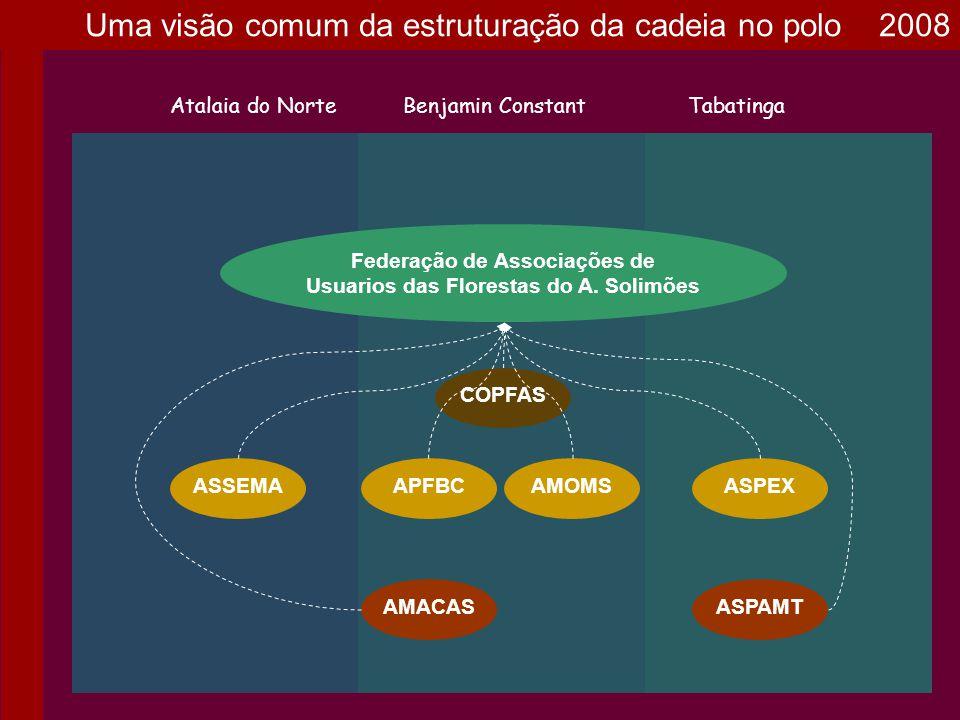 AMOMS Federação de Associações de Usuarios das Florestas do A. Solimões Atalaia do NorteBenjamin ConstantTabatinga ASPEXASSEMA COPFAS APFBC ASPAMTAMAC