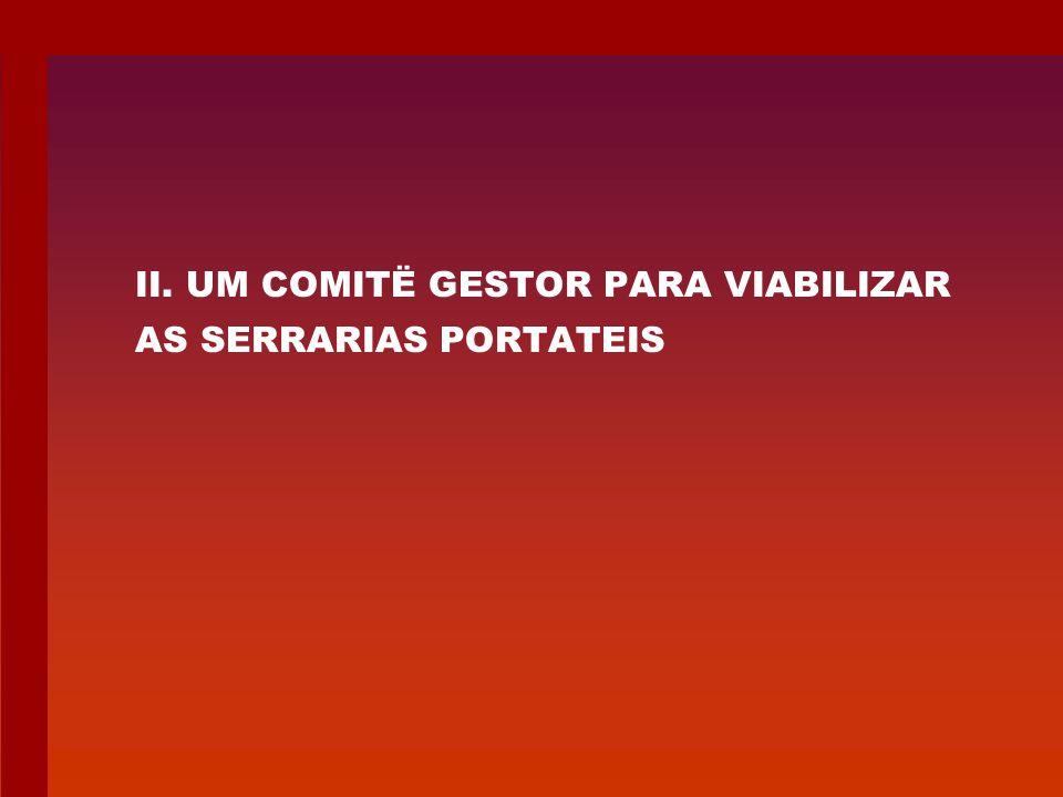 II. UM COMITË GESTOR PARA VIABILIZAR AS SERRARIAS PORTATEIS