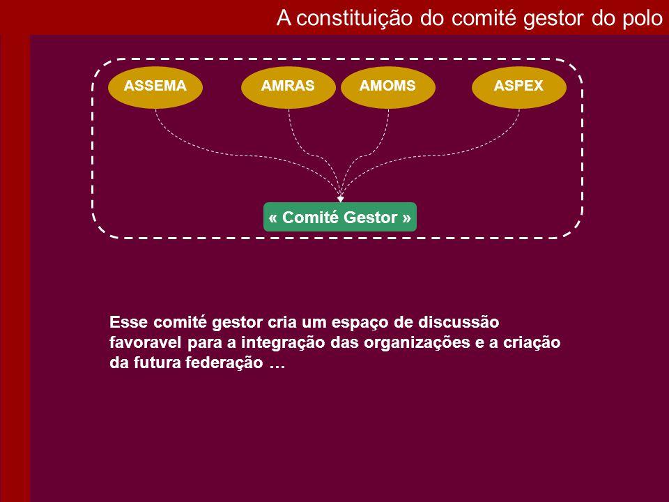 A constituição do comité gestor do polo Esse comité gestor cria um espaço de discussão favoravel para a integração das organizações e a criação da fut