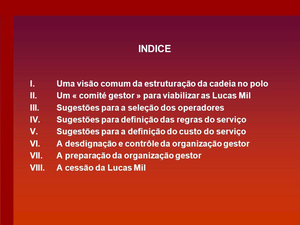 INDICE I.Uma visão comum da estruturação da cadeia no polo II.Um « comité gestor » para viabilizar as Lucas Mil III.Sugestões para a seleção dos opera