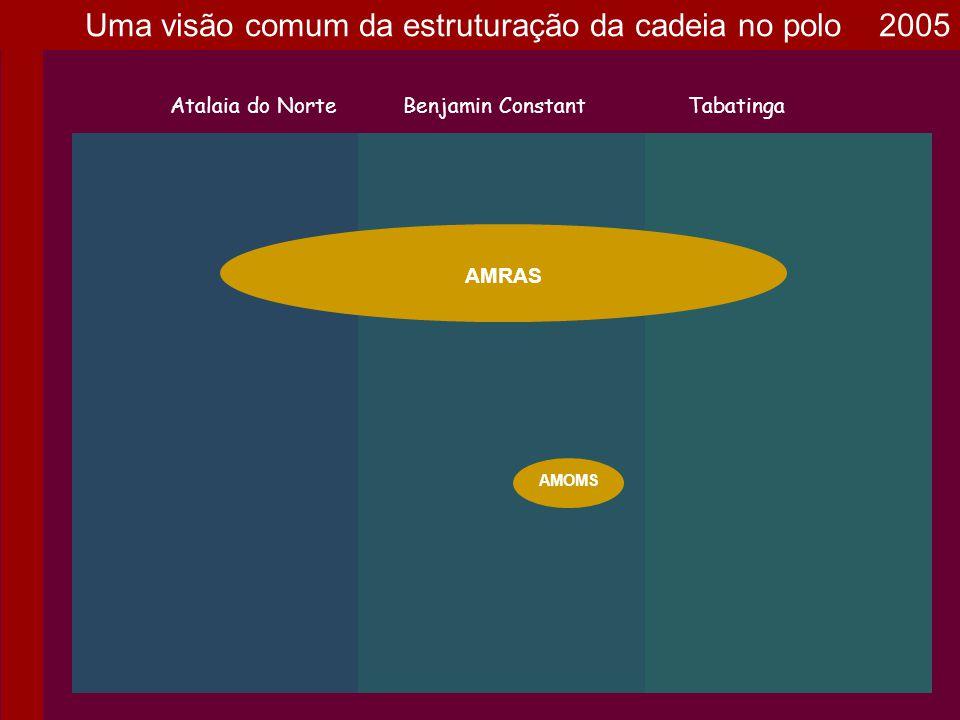 Uma visão comum da estruturação da cadeia no polo 2005 AMRAS Atalaia do NorteBenjamin ConstantTabatinga AMOMS