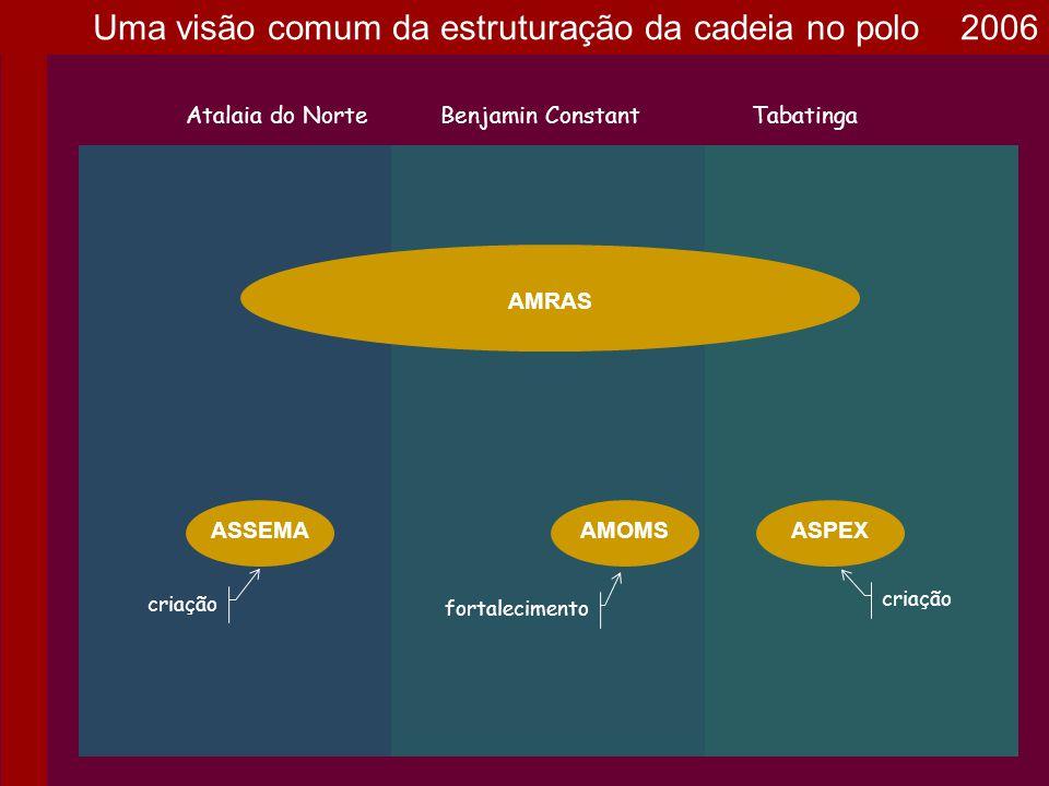 AMRAS Atalaia do NorteBenjamin ConstantTabatinga ASPEXASSEMAAMOMS COPFAS criação Uma visão comum da estruturação da cadeia no polo 2006
