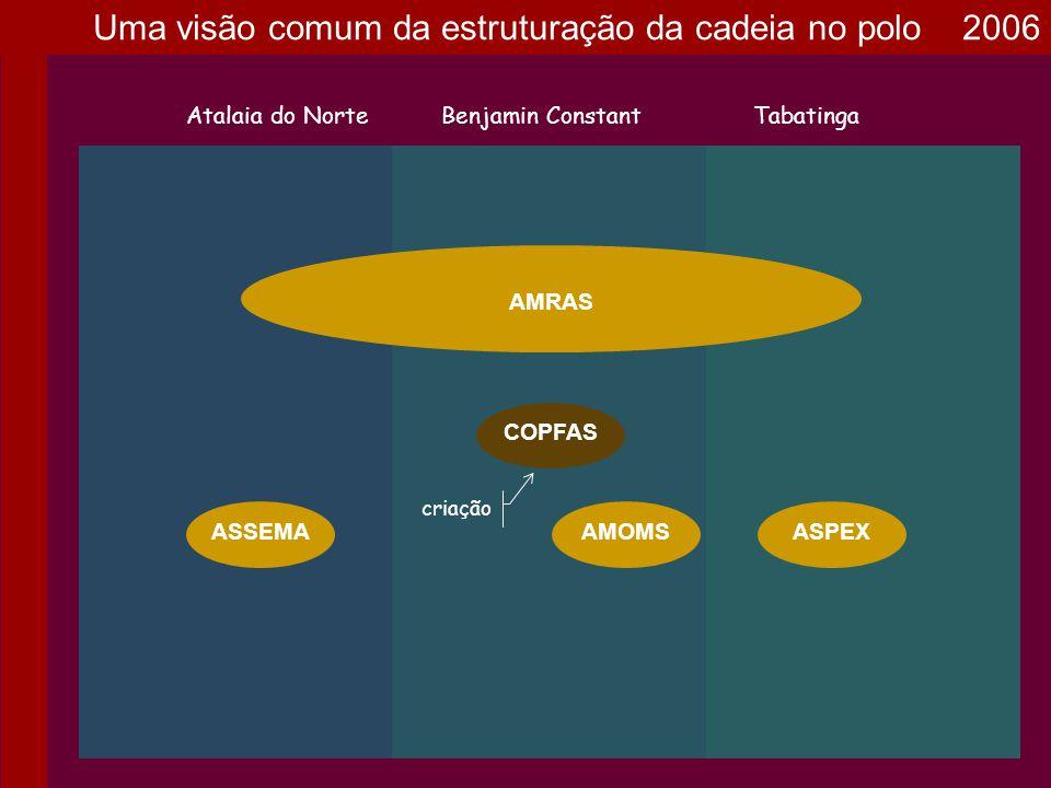 AMOMS AMRAS Atalaia do NorteBenjamin ConstantTabatinga ASPEXASSEMA COPFAS APFBC criação Socios da AMRAS de Benjamin Constant Uma visão comum da estruturação da cadeia no polo 2007