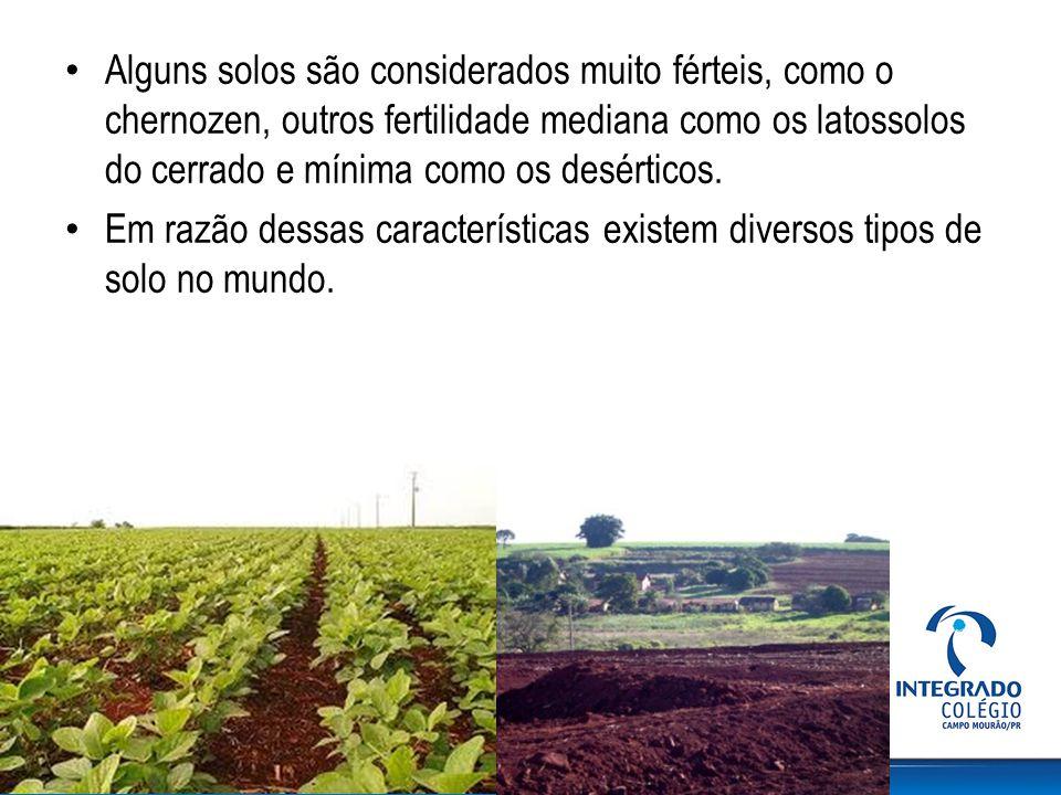 Alguns solos são considerados muito férteis, como o chernozen, outros fertilidade mediana como os latossolos do cerrado e mínima como os desérticos. E