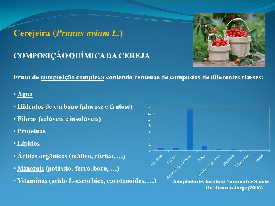 COMPOSIÇÃO QUÍMICA DA CEREJA Fruto de composição complexa contendo centenas de compostos de diferentes classes: Água Hidratos de carbono (glucose e frutose) Fibras (solúveis e insolúveis) Proteínas Lípidos Ácidos orgânicos (málico, cítrico, …) Minerais (potássio, ferro, boro, …) Vitaminas (ácido L-ascórbico, carotenóides, …) Cerejeira (Prunus avium L.) Adaptado de: Instituto Nacional de Saúde Dr.