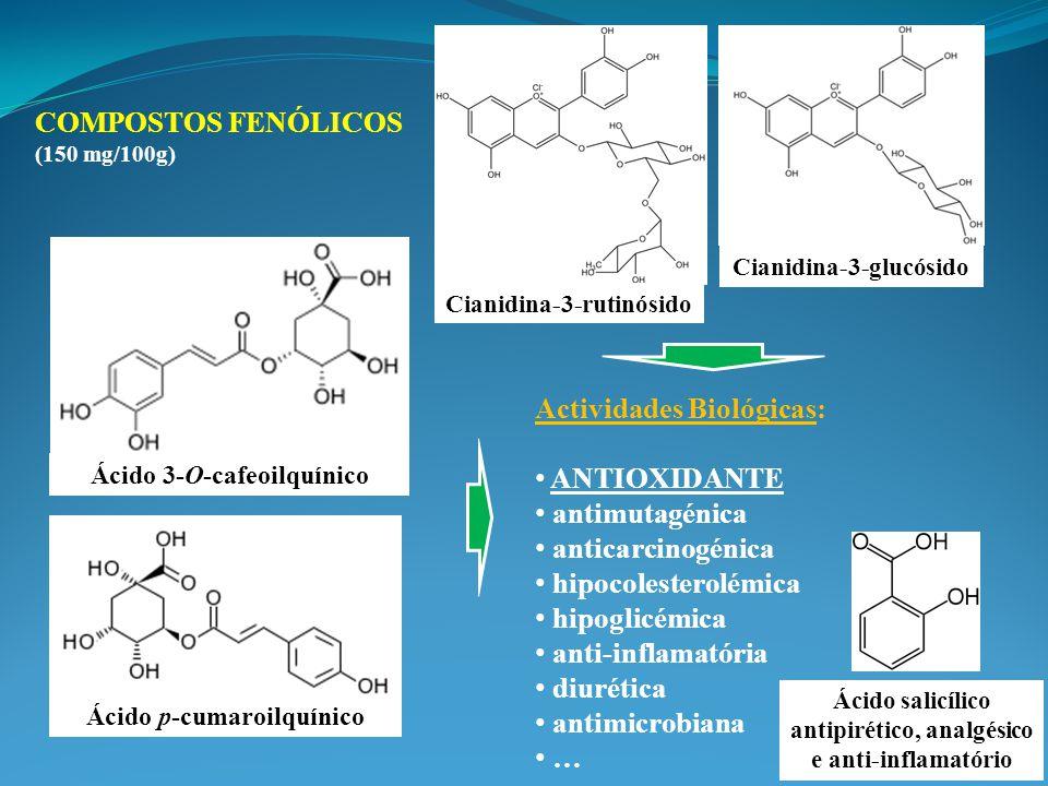 COMPOSTOS FENÓLICOS (150 mg/100g) Actividades Biológicas: ANTIOXIDANTE antimutagénica anticarcinogénica hipocolesterolémica hipoglicémica anti-inflamatória diurética antimicrobiana … Ácido p-cumaroilquínico Cianidina-3-rutinósido Ácido 3-O-cafeoilquínico Cianidina-3-glucósido Ácido salicílico antipirético, analgésico e anti-inflamatório