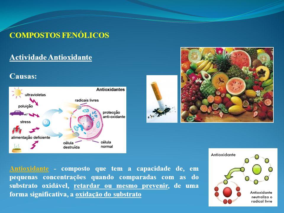 Actividade Antioxidante Causas: Antioxidante - composto que tem a capacidade de, em pequenas concentrações quando comparadas com as do substrato oxidável, retardar ou mesmo prevenir, de uma forma significativa, a oxidação do substrato COMPOSTOS FENÓLICOS