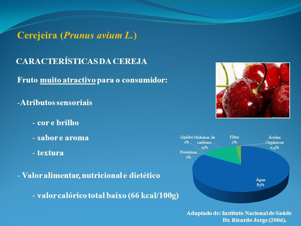CARACTERÍSTICAS DA CEREJA Fruto muito atractivo para o consumidor: -Atributos sensoriais - cor e brilho - sabor e aroma - textura - Valor alimentar, n