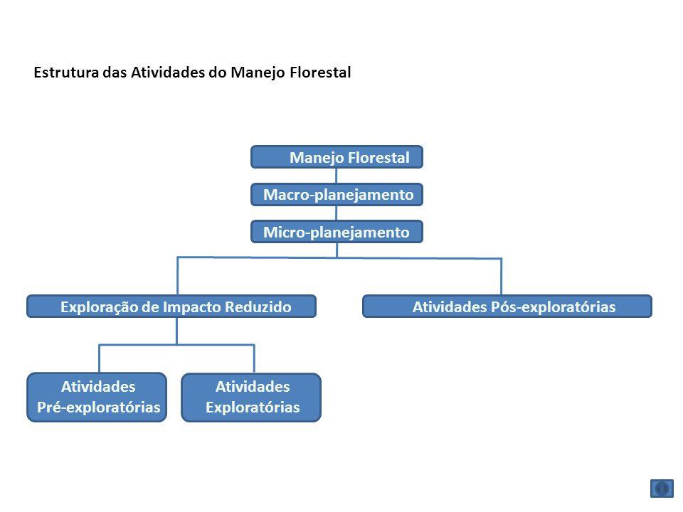 Estrutura das Atividades do Manejo Florestal Manejo Florestal Macro-planejamento Micro-planejamento Exploração de Impacto ReduzidoAtividades Pós-explo