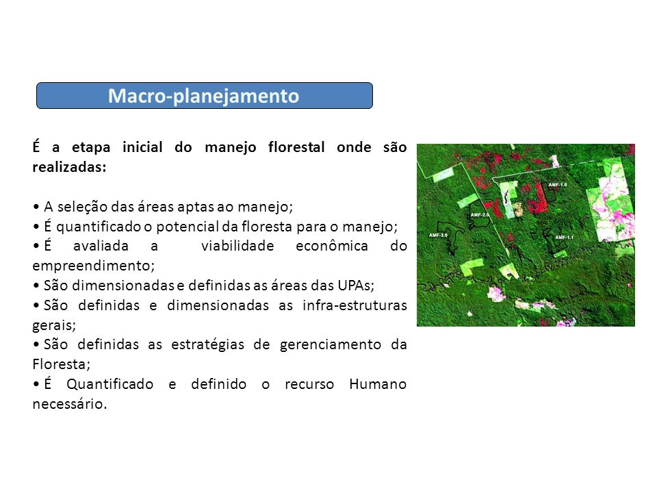 É a etapa inicial do manejo florestal onde são realizadas: A seleção das áreas aptas ao manejo; A seleção das áreas aptas ao manejo; É quantificado o