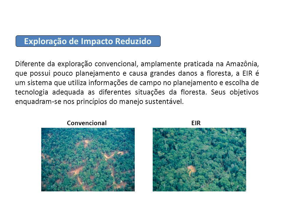 Diferente da exploração convencional, amplamente praticada na Amazônia, que possui pouco planejamento e causa grandes danos a floresta, a EIR é um sis