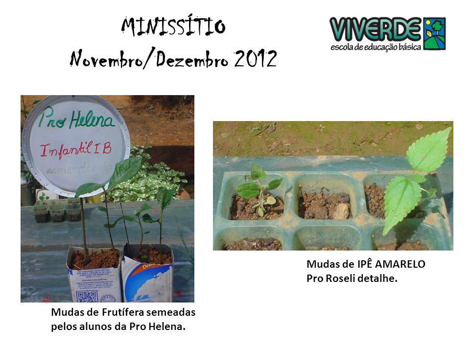 Oficina de vassoura de garrafas pet - Pro Carol 3º ano. MINISSÍTIO Novembro/Dezembro 2012