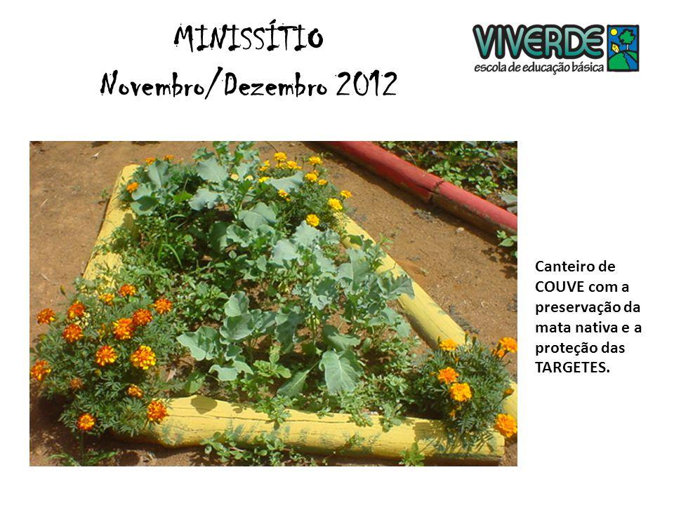 Formação Socioambiental Atividade na HORTA. MINISSÍTIO Novembro/Dezembro 2012