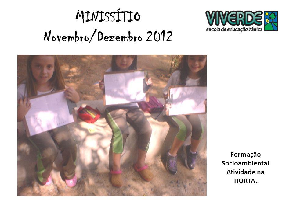 MINISSÍTIO Novembro/Dezembro 2012 Oficina de sabores - Sucos de BETERRABA, ABACAXI e MAÇÃ.