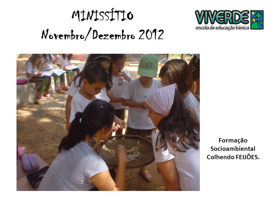 Formação Socioambiental Colhendo FEIJÕES. MINISSÍTIO Novembro/Dezembro 2012
