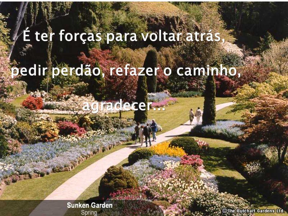 Ter paz é ter coragem de chorar ou de sorrir quando se tem vontade...