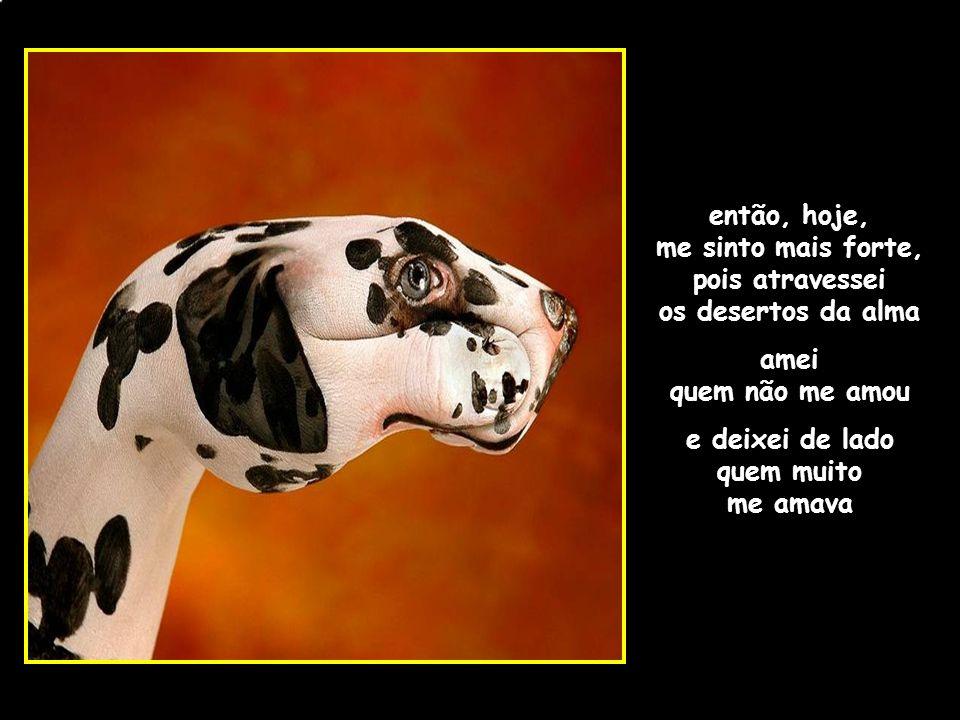 adao-las@ig.com.br então, hoje, me sinto mais forte, pois atravessei os desertos da alma amei quem não me amou e deixei de lado quem muito me amava
