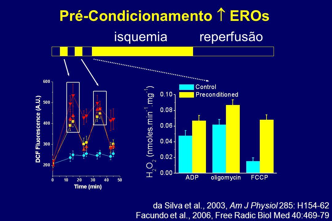 Pré-Condicionamento  EROs isquemiareperfusão da Silva et al., 2003, Am J Physiol 285: H154-62 Facundo et al., 2006, Free Radic Biol Med 40:469-79