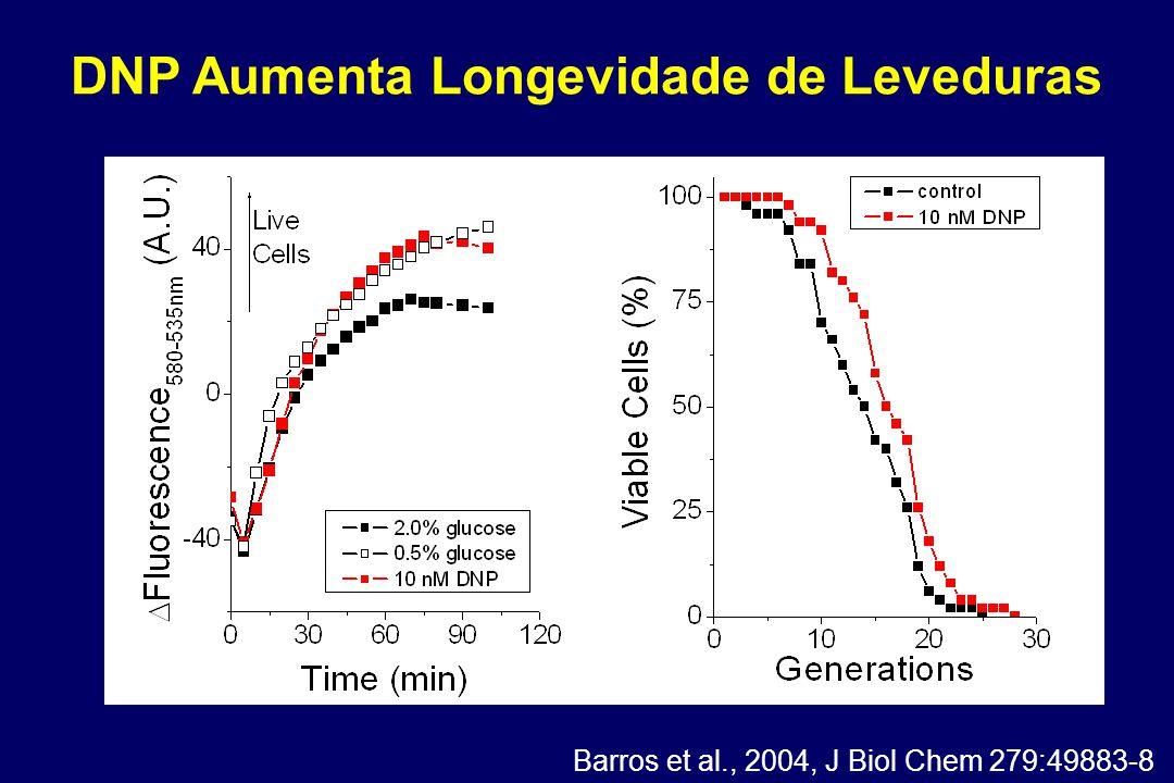 DNP Aumenta Longevidade de Leveduras Barros et al., 2004, J Biol Chem 279:49883-8