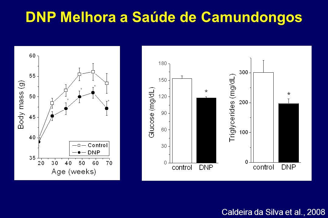 DNP Melhora a Saúde de Camundongos Caldeira da Silva et al., 2008