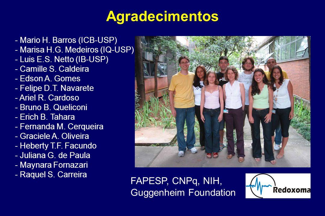 Agradecimentos - Mario H.Barros (ICB-USP) - Marisa H.G.