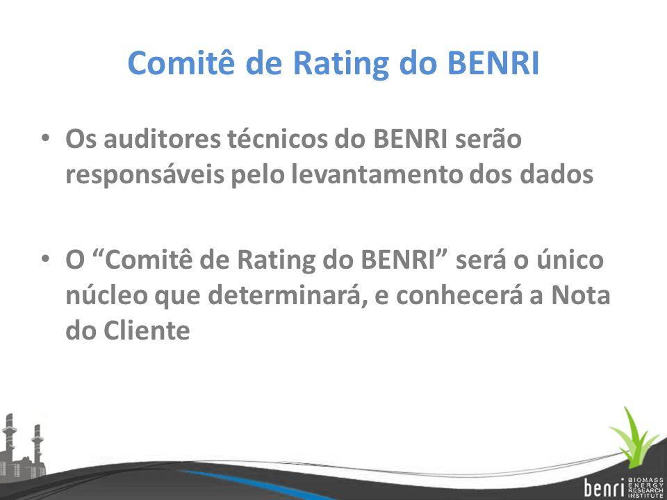"""Comitê de Rating do BENRI Os auditores técnicos do BENRI serão responsáveis pelo levantamento dos dados O """"Comitê de Rating do BENRI"""" será o único núc"""