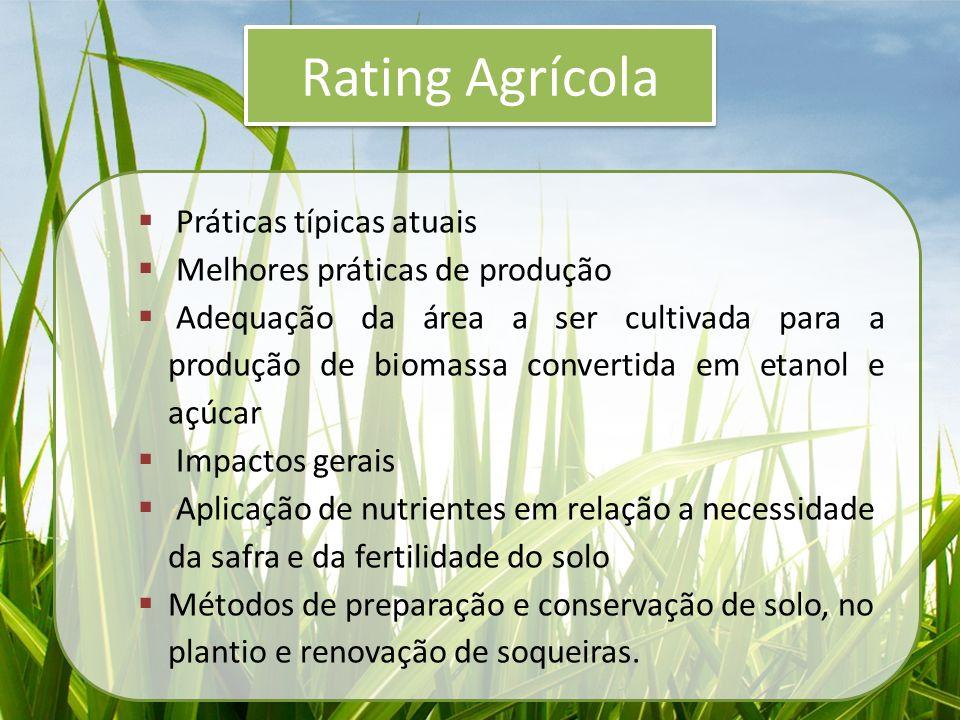 Rating Agrícola  Práticas típicas atuais  Melhores práticas de produção  Adequação da área a ser cultivada para a produção de biomassa convertida e
